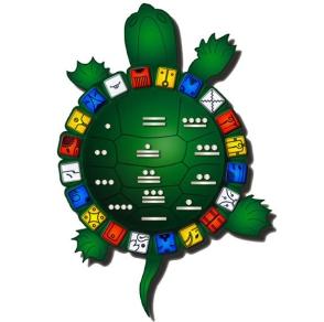 13-20-turtle