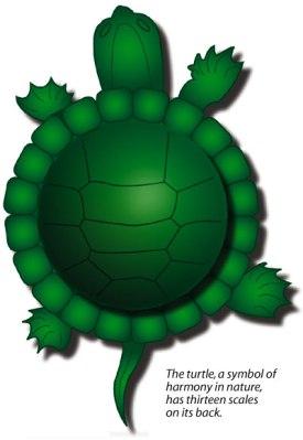 13-moon-turtle