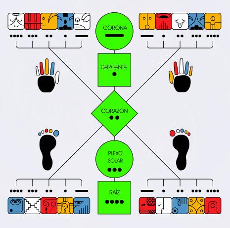 holon-humano-20-dedos