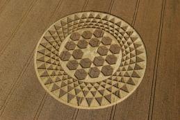 cubes-crop-circle