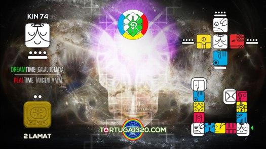 Solar Wizard / Mago Solar