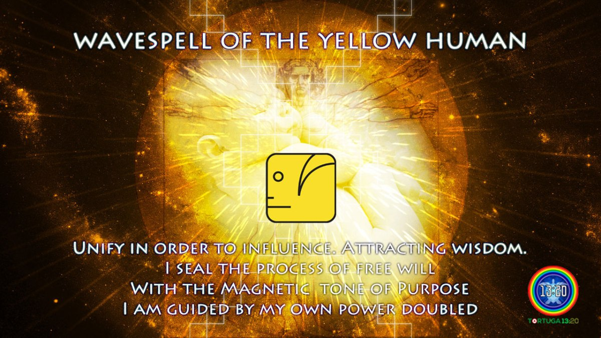 Wavespell 8 of the Yellow Human ~ Dreamspell Journey