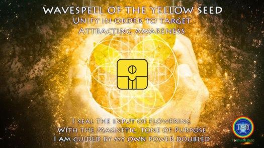 yellow-seed-wavespell-affirmation
