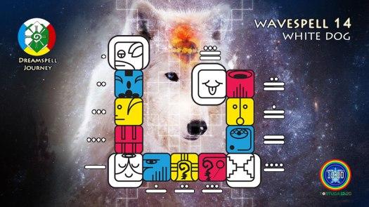 White Dog Wavespell / Onda Encantada del Perro Blanco