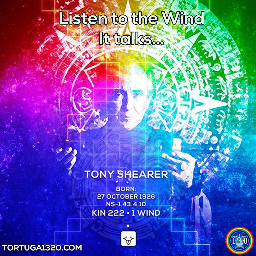 tony-shearer-wind-insta