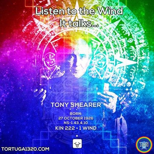 tony-shearer-wind-insta