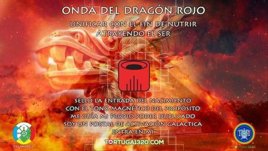 onda-encantada-dragon-rojo-afirmacion