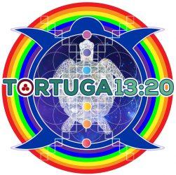 cropped-tortuga-1320-logo.jpg